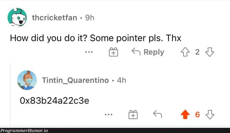 pointer plz | ProgrammerHumor.io