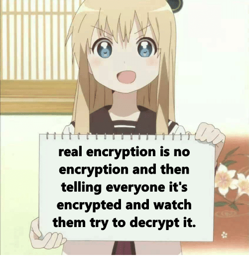 Encrypted data   try-memes, data-memes, encryption-memes   ProgrammerHumor.io