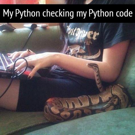 My Python is checking my Python Code!   code-memes, python-memes   ProgrammerHumor.io